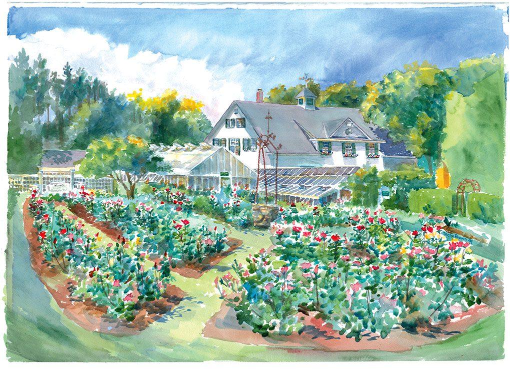 Fuller Gardens Side Garden, watercolor by Denise Brown