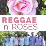 Reggae 'n' Roses, August 4, 2017
